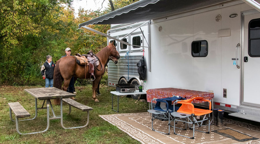 combo trailer and horse