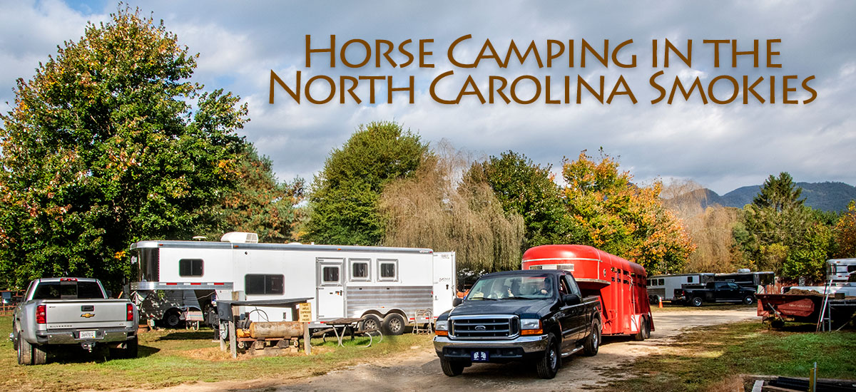 Horse campers and trailers